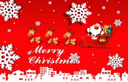 merry christmas!糖酒网祝大家圣诞节快乐!